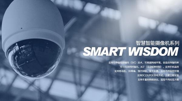 重庆西沃电子科技有限公司